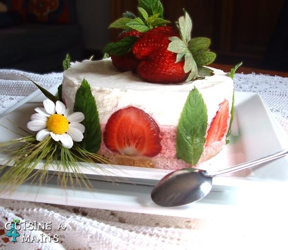cheesecake46