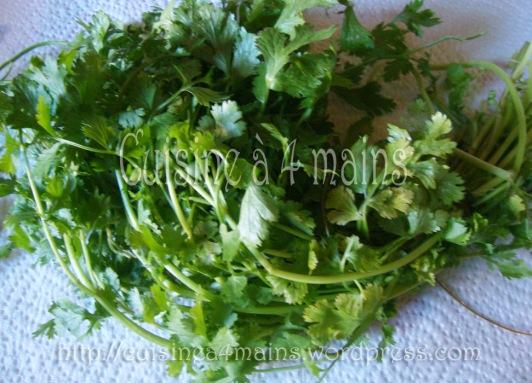 conservation herbes fraiches 2 - cuisine à 4 mains