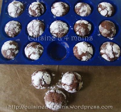 biscuits craquelés au chocolat copie
