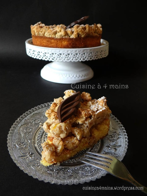 hrapocusa-dalmatian-dol-cake-8-cuisine-a4-mains